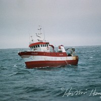 Hulda ÍS 448