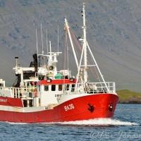 Þristur BA 36