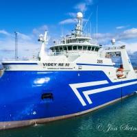 Viðey RE 50 landaði á Sauðárkróki