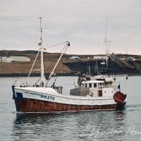Atlanúpur ÞH 270