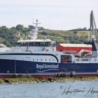 Avataq GR 6-19