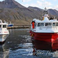 Bíldsey SH 65 kemur að landi á Siglufirði