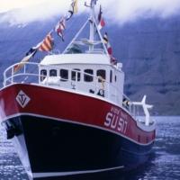 Víðir Trausti SU 517