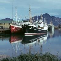 Stjarnan og Ólafur Tryggvason á Hornafirði