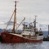 Dagfari ÞH 40 við bryggju á Húsavík