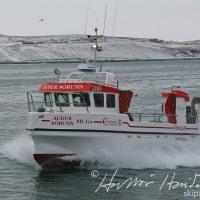 Auður Þórunn ÞH 344