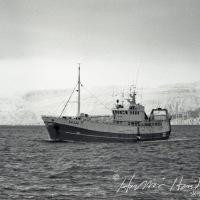 Kristbjörg II ÞH 244