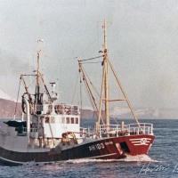 Sigþór ÞH 100