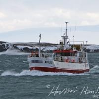 Haförn ÞH 26