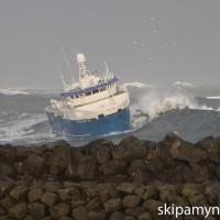 Steinunn kemur að landi í Þorlákshöfn