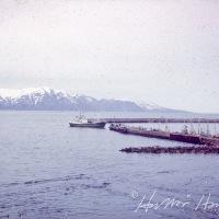 Héðinn ÞH 57