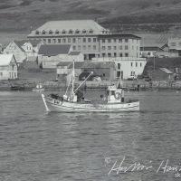 Bára ÞH 7