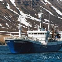 Guðmundur Ólafur ÓF 91