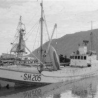 Skarðsvík SH 205 við bryggju á Siglufirði