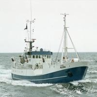 Lýtingur NS 250