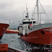 Rauð fiskiskip í Húsavíkurhöfn
