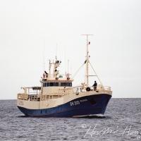 Magnús SH 205